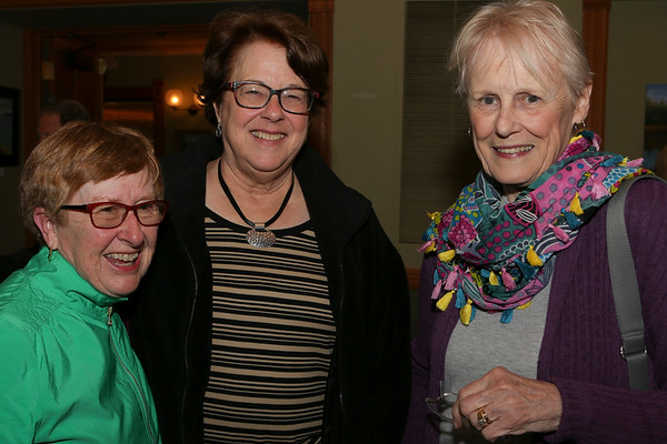 2019-5-10  Elizabeth Berg, Lynne Olson and Elizabeth Letts