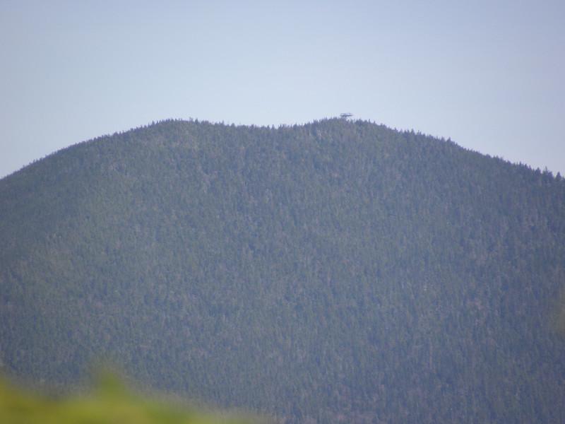 Carrigan summit from near the E Hunt summit.JPG