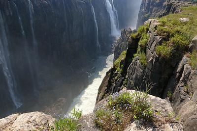 Best African Safari Pictures