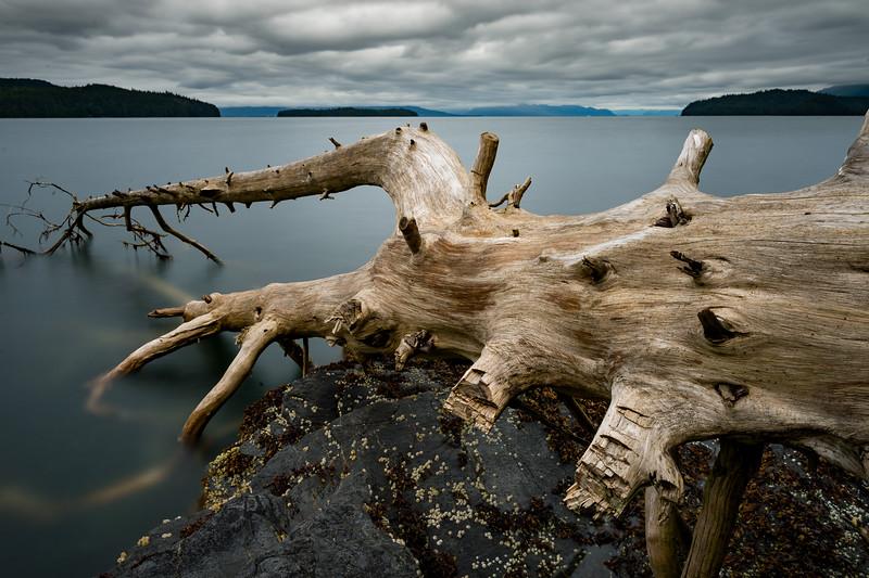 Alaska-2016-32.jpg