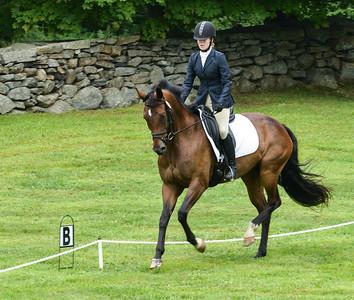 Lyme Horse Trials 2013