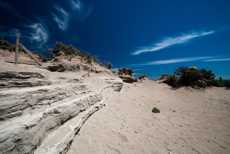 Puerto Madryn 201111 Valdes 291.jpg