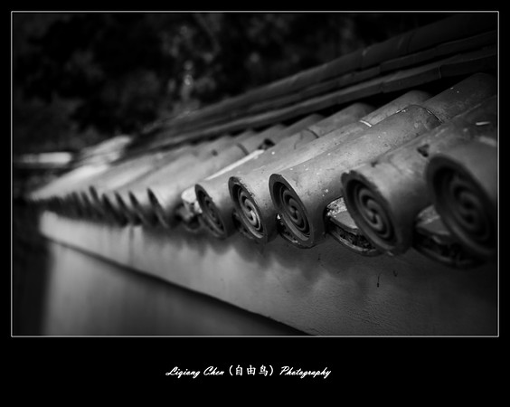 _MG_4845-M.jpg