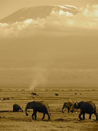 East Africa Feb 09