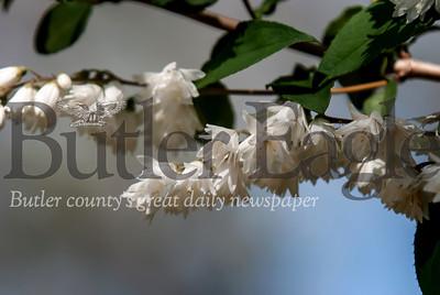 070119 photos