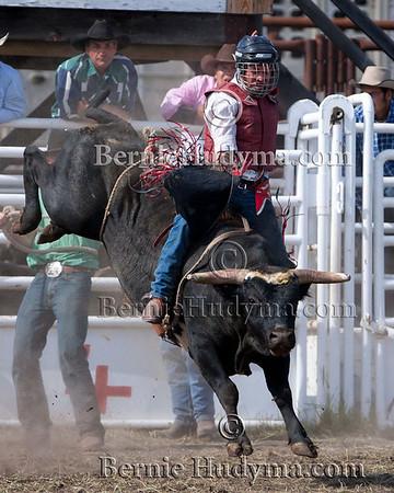 Bull Riding - Bridge Lake 2010