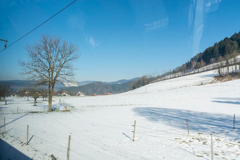 Black Forest Line-7923.jpg