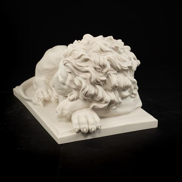 Large-Lions-416.jpg