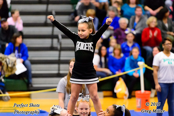 Cheerleading --- ( 2016 - 2017 )