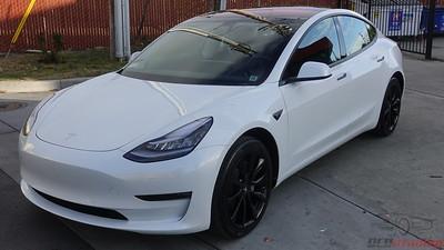 Tesla Model 3 - Pearl White Multi-Coat (3)