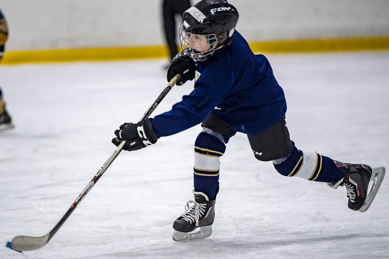 2019-02-03-Ryan-Naughton-Hockey-43.jpg