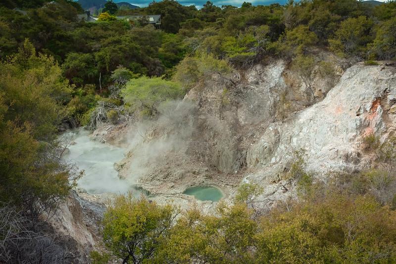 Rotorua-11.jpg