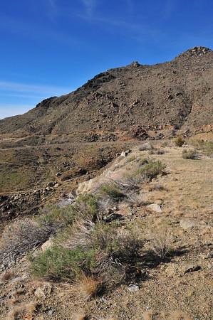Arizona - 2008
