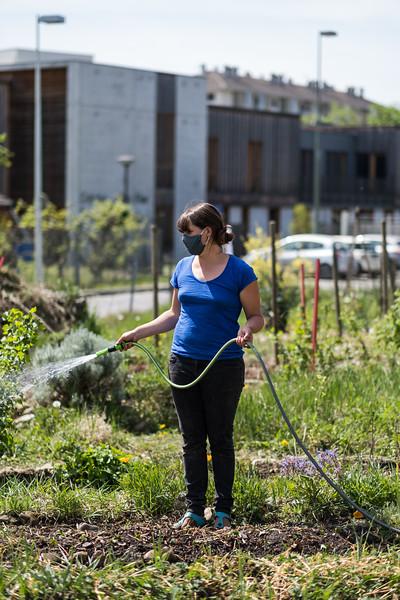Jardins urbains - Covid-19