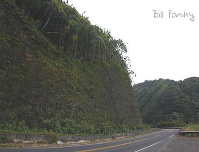 Maui, Hana Highway North