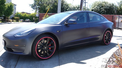 Tesla Model 3 - Midnight Silver with Pink Alloygators