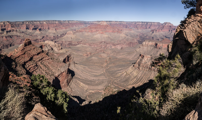Down into the Canyon