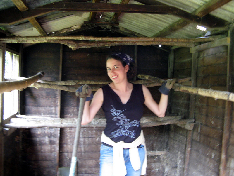 Steph got to clean the chicken coop---lucky her!  We were going to disinfect it with a blowtorch, too, but Natasha got to do that.