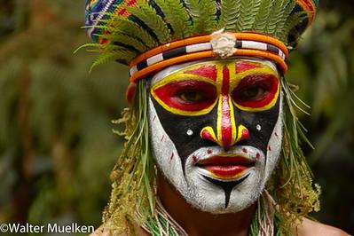 Papua Niu Guini 2008