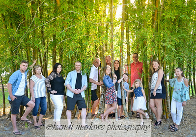 The King Family 2018