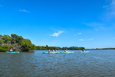 9AM Mangrove Tunnel Kayak Tour - Ravikumar, Gettings, Fox & Hodson