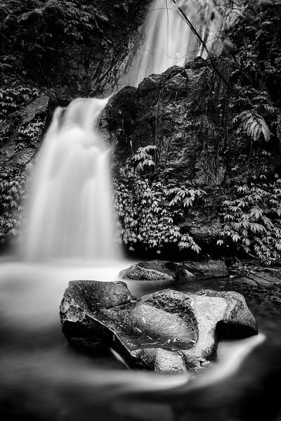160313 - Bali - 5073.jpg