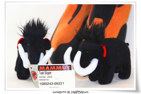 20110614 Mammut