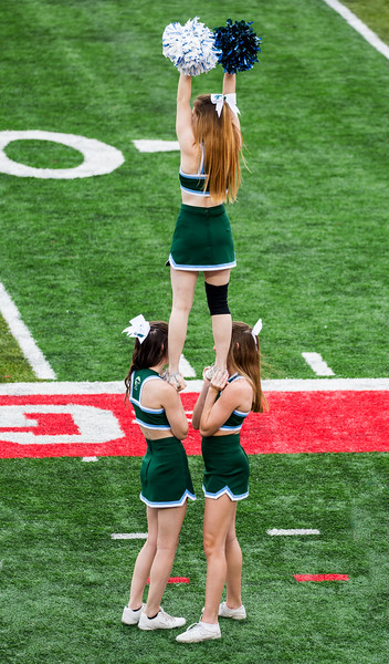 Tulane cheerleaders in front of our seats