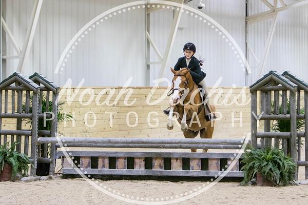 World Equestrian Center Week 3