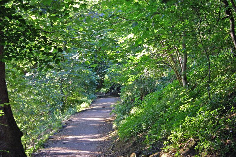 Stirling Castle Back Walk