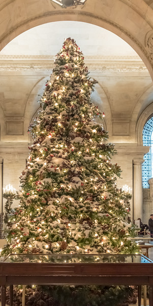 NYC Christmas TourHD (144 of 165).jpg