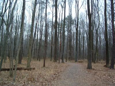 huntley meadows Nov 27, 2004