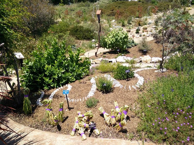 Lichen Series installation - Jenni Ward