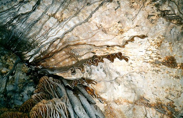New Mexico - Carlsbad Caverns National Park