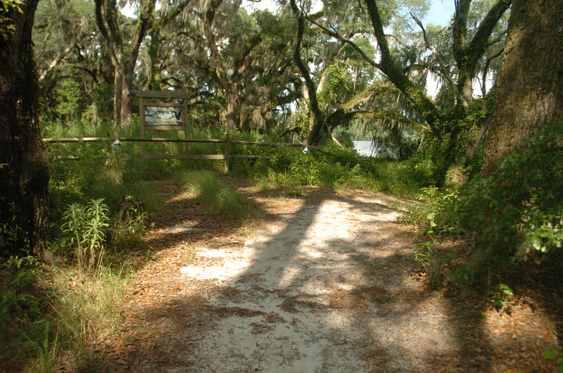 The trail had continued straight here - now detours to the right.