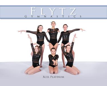 FLYTZ Xcel Platinum