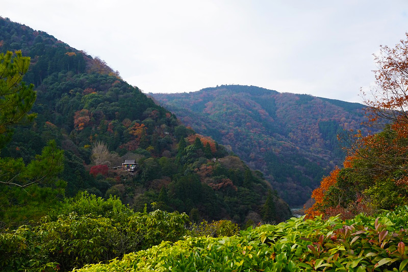Kyoto-Mountain-View.JPG