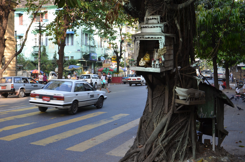 DSC_5106-tree-spirit-house.JPG