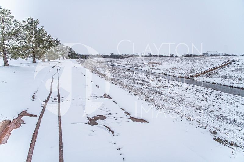 wf_backyard_snow_25.jpg