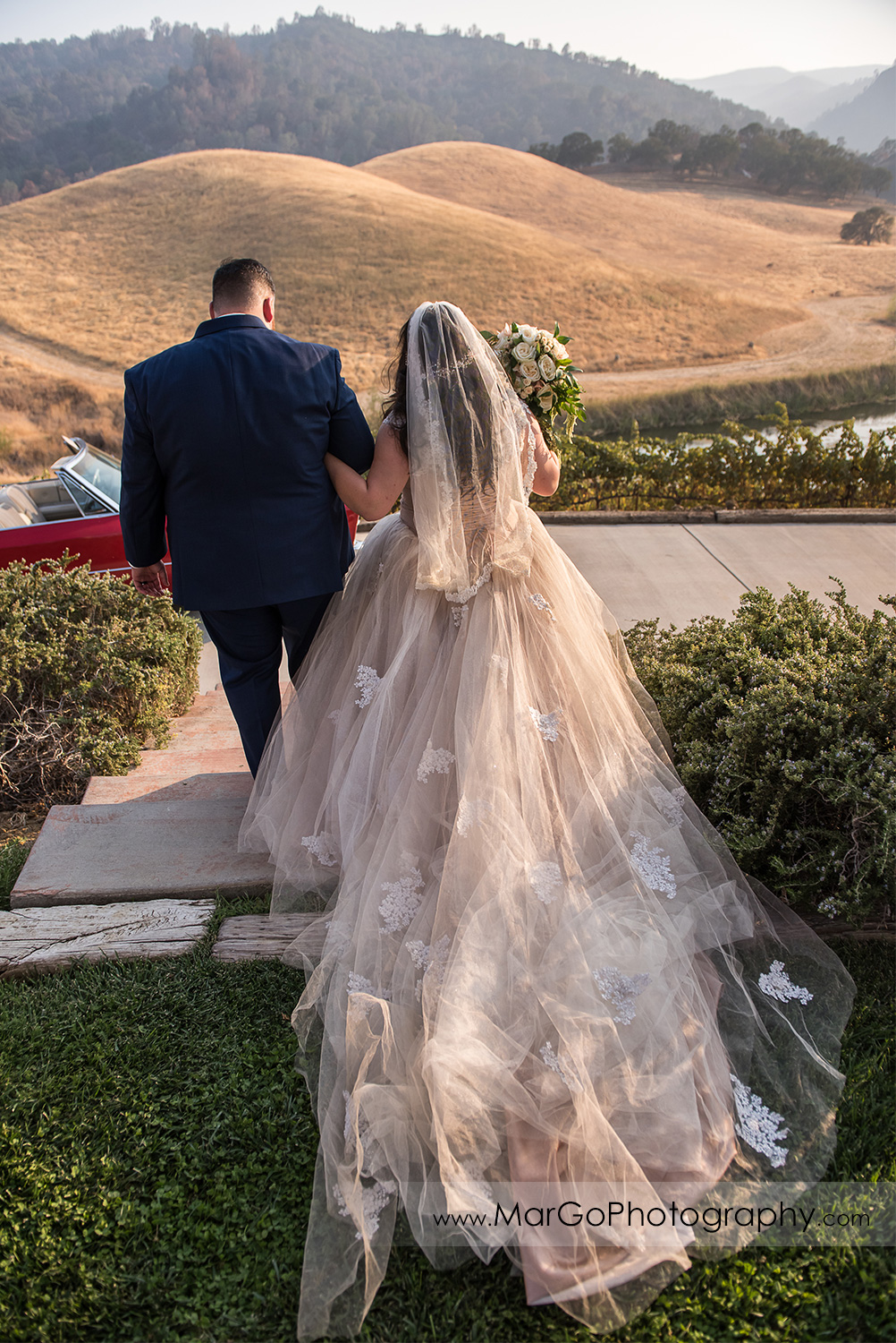 back view of bride and groom walking at Taber Ranch Vineyards
