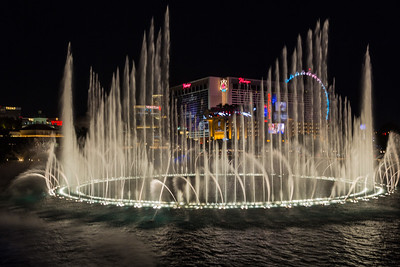 Las Vegas Gallery '15