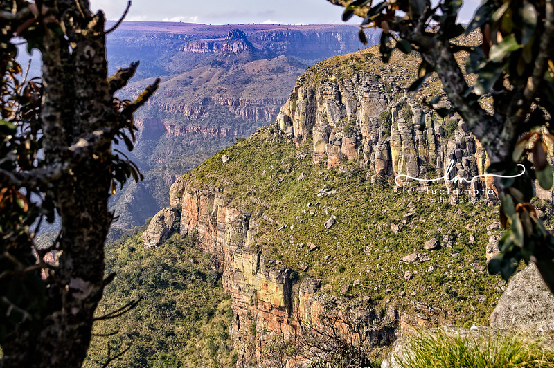 SOUTH AFRICA-123.jpg
