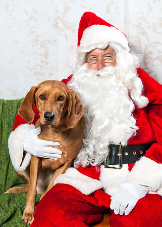 Bend Spay & Neuter - Santa Event