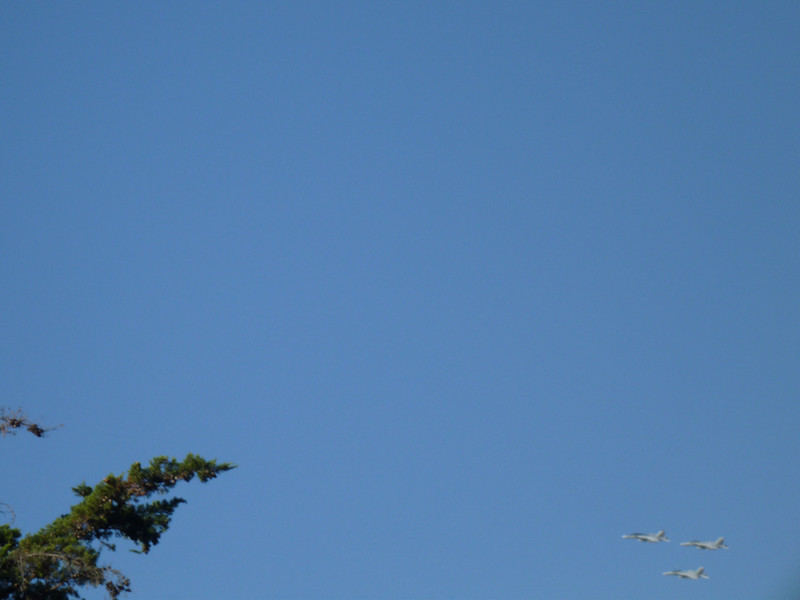 These three jets flew overhead twice.  I have no idea why, or who they were.  (darn cameras w/o viewfindes, I was guessing what I was getting here).