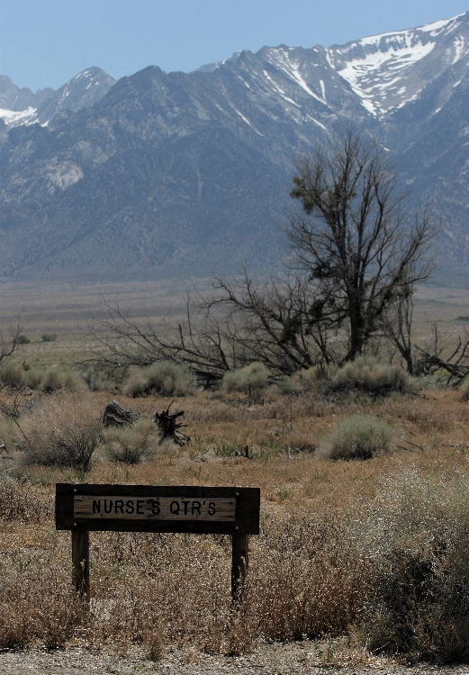 manzanar4.jpg
