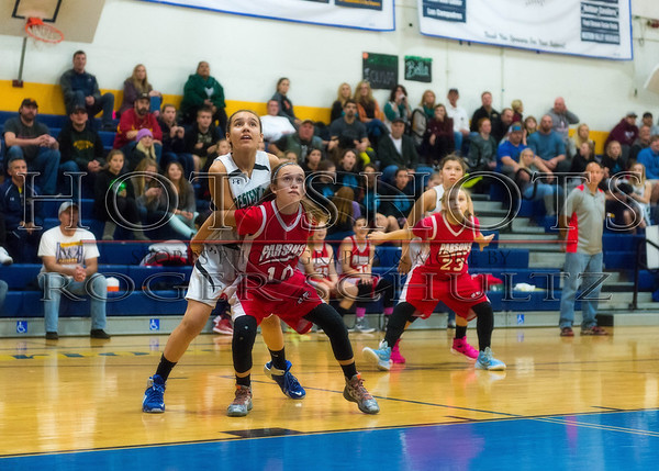 2015 Jaycee Tournament AAA Division  Game 3 Championship Crescent Elk vs. Parsons