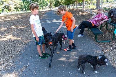 Dog park with Bailey