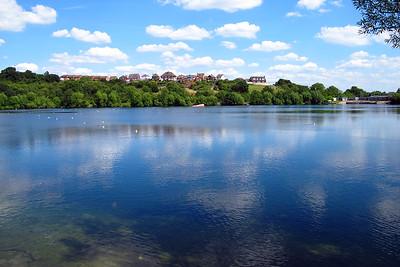 Saltwell's nature reserve