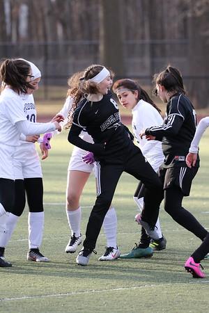 Edsel Girls JV Soccer