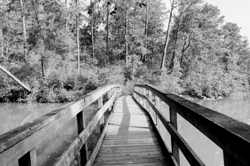 Lake Livingston Foot Bridge
